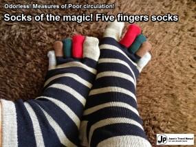 5_finger_socks_01_en