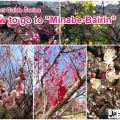 minabe_plumforest_07_en