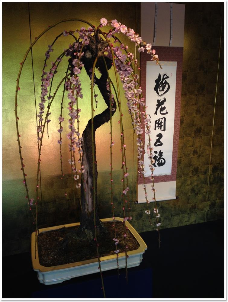 nagahamabonbaiten_06