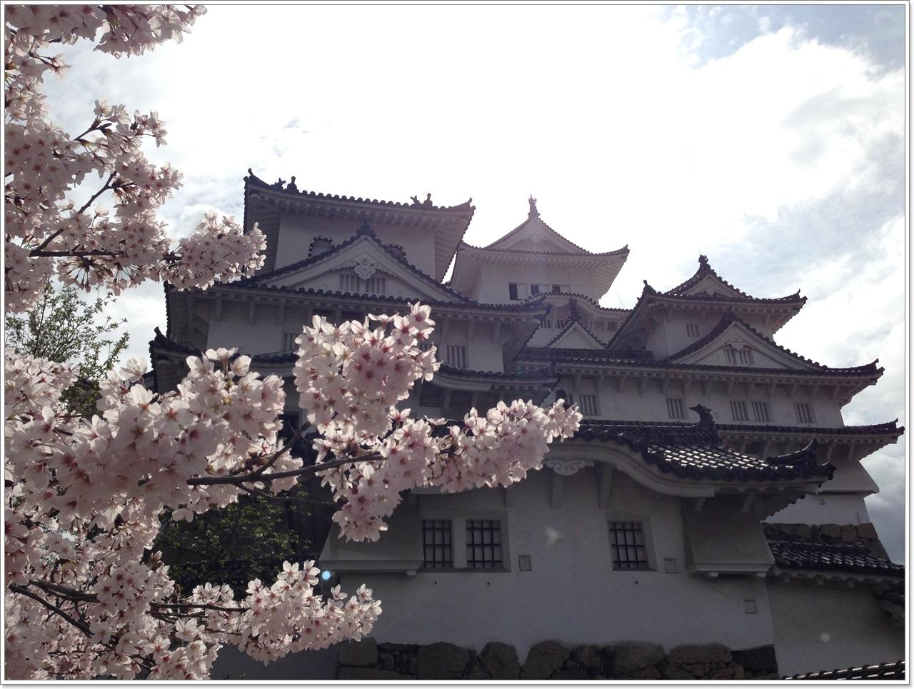 himeji divorced singles Miyamoto musashi (宮本 武蔵, c 1584 – june 13, 1645), also known as shinmen takezō, miyamoto bennosuke or, by his buddhist name, niten dōraku, was a japanese swordsman, philosopher, writer and rōnin.