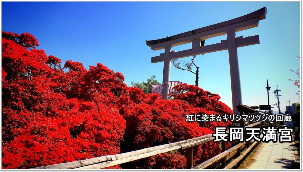nagaoka-tenmangu-01_jp