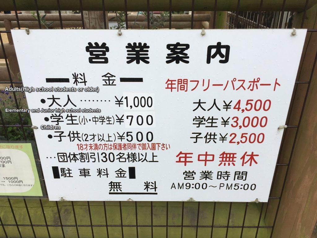 shibukawazoo-price