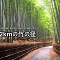 bamboo-road-01-2-txt