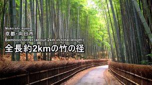 bamboo-road-01-2-txt