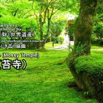Saiho-ji Temple:Information of the best seasons of Moss Temple.