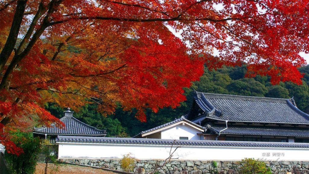 kosho-ji-05