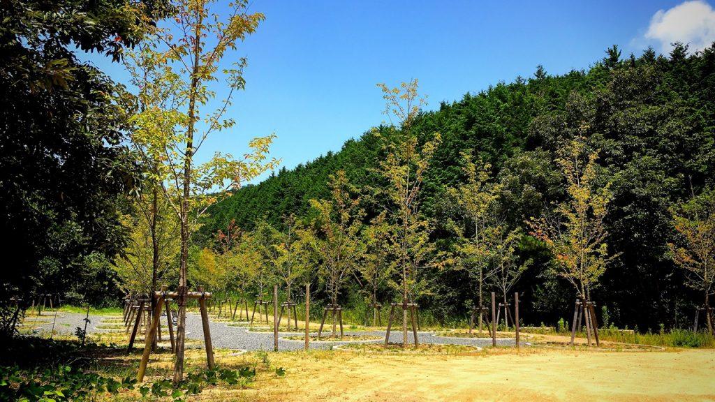 naoshima-19-20-01
