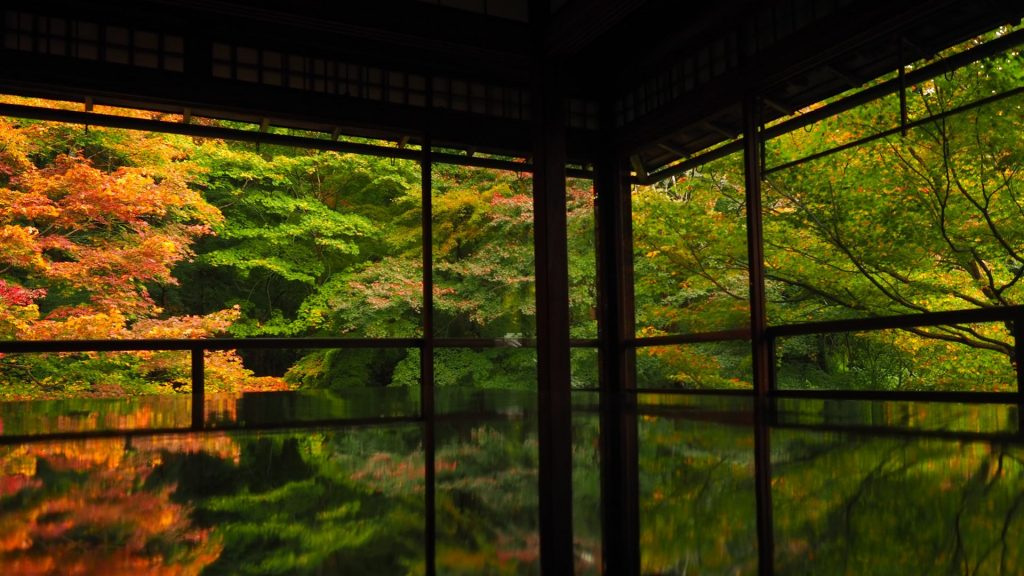 瑠璃光院-書院からの紅葉