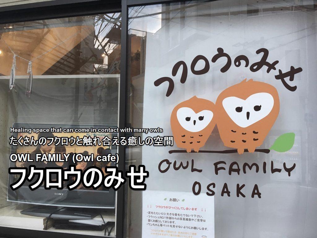 owlfamily-01