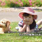 西日本・関西:おすすめ動物カフェ&ふれあいスポットのまとめ