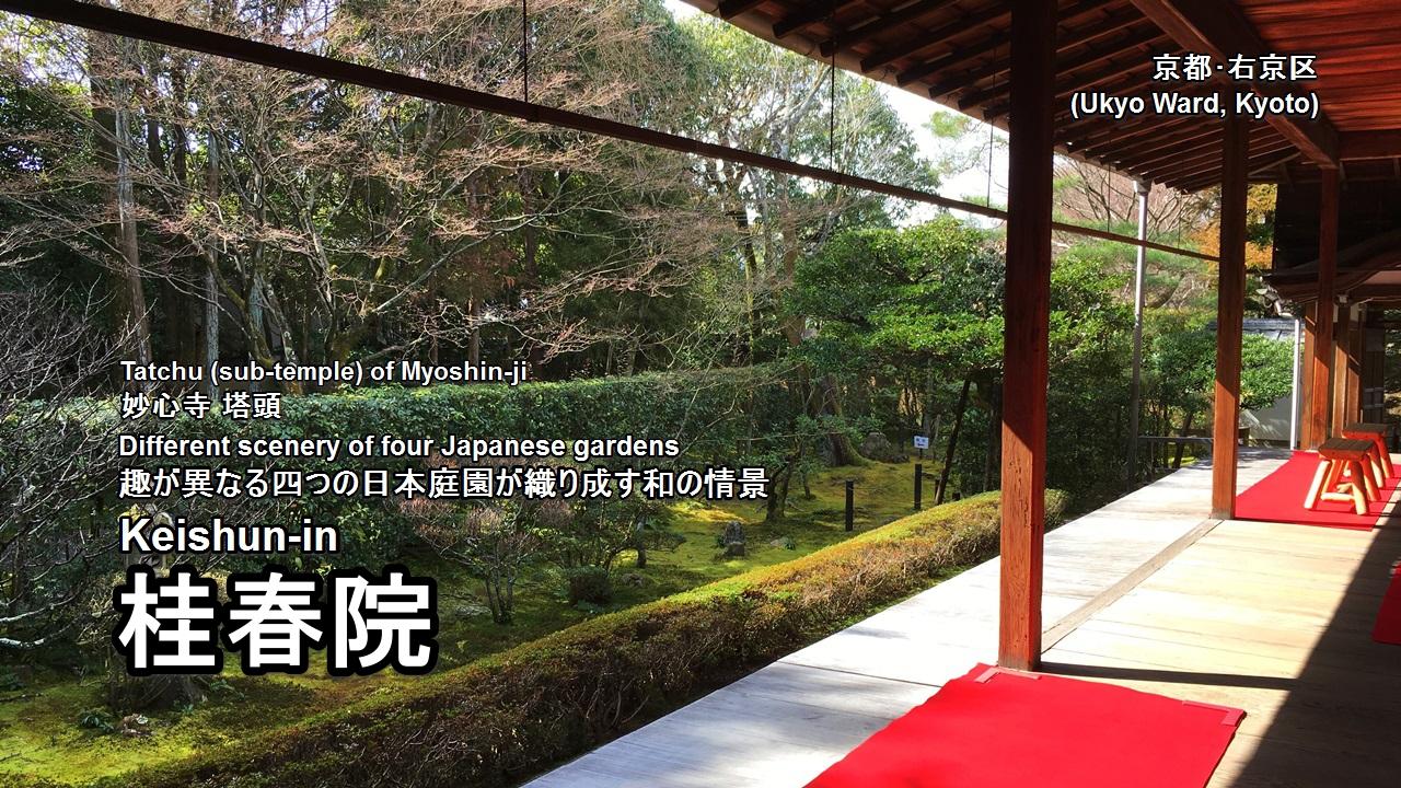 京都のお寺:「桂春院 (妙心寺塔頭)」の見どころと行き方