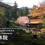 滋賀の名勝:旧竹林院の見どころと行き方