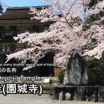 Highlights and how to get to the Mii-dera (Onjo-ji).