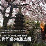 The residence of Toemon SANO (Uetoh Zohen)  : Famous place of cherry blossoms in Kyoto