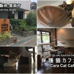 Highlights and how to get to Cara Cat Cafe.
