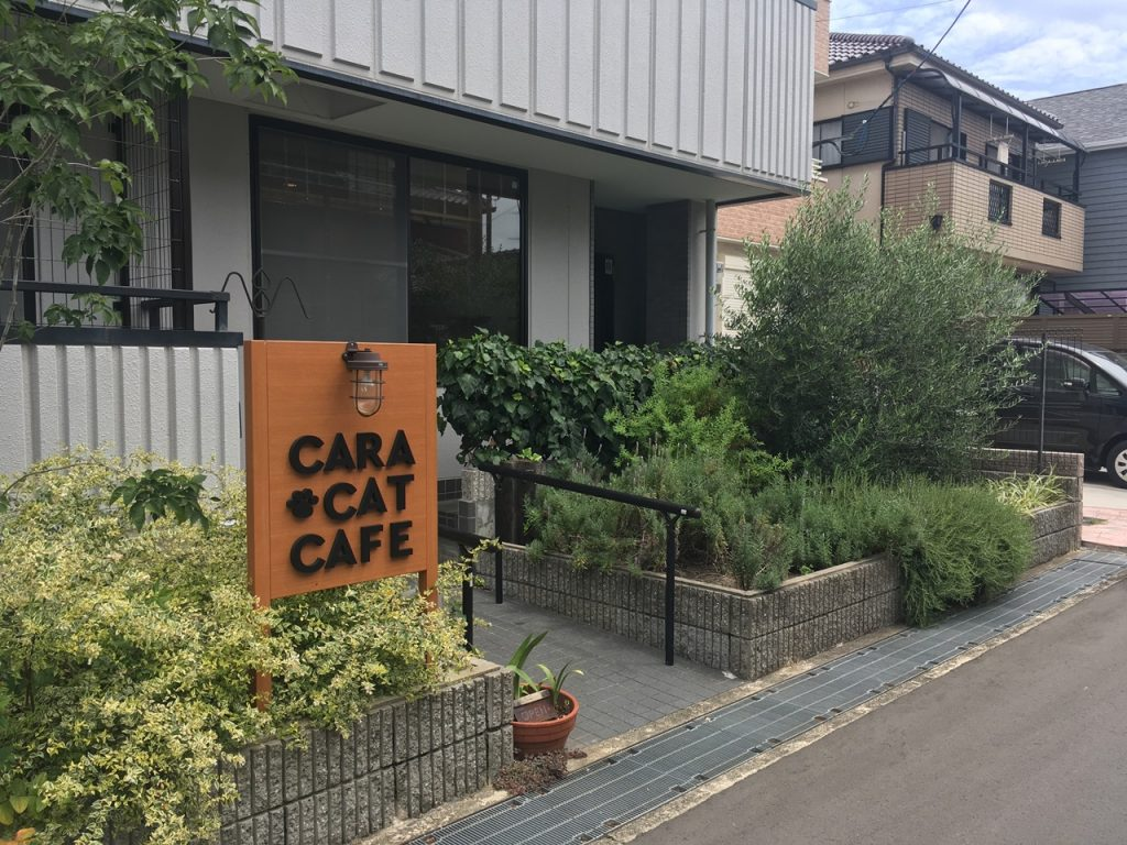 cara-cat-cafe-06