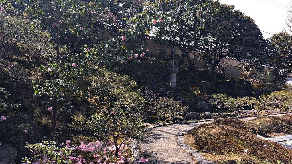 霊鑑寺-庭園