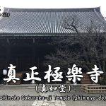 Highlights and how to get to the Shinsho Gokuraku-ji (Shinnyo-do) Temple.