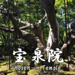 Highlights and how to get to the Hosen-in Temple.