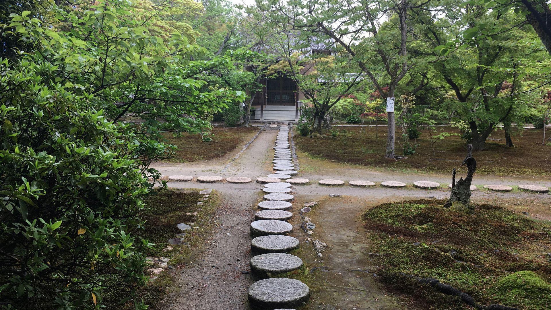 勧修寺-本堂前の小道