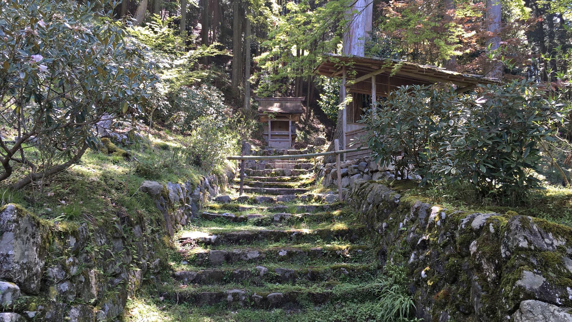 勝林院-苔むした境内石段