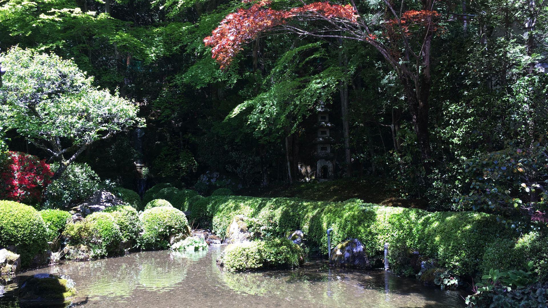 寂光院-四方正面の池