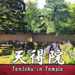 京都のお寺:天得院(てんとくいん)の見どころと行き方