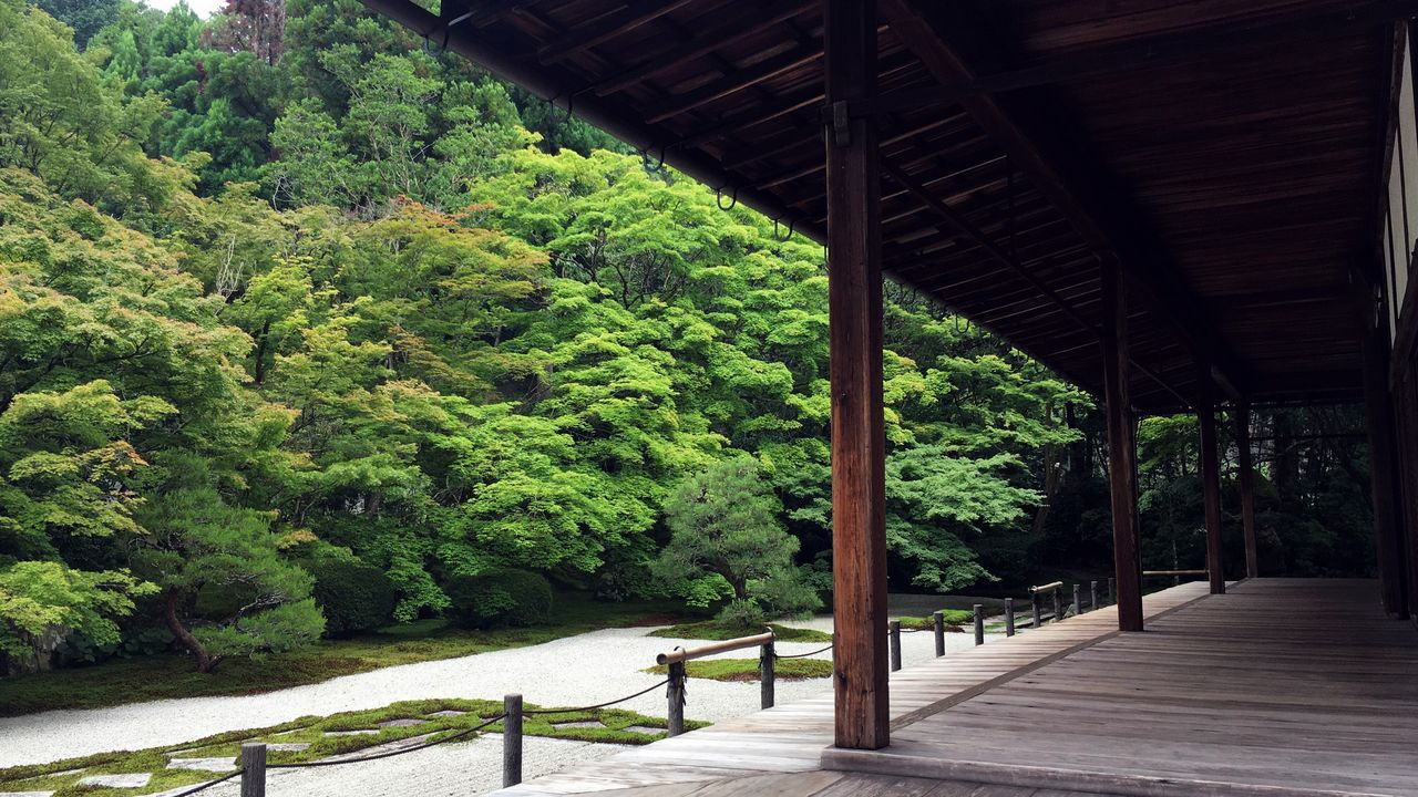 天授庵の本堂前庭01