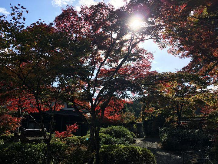 jorakuji-cr-06_s