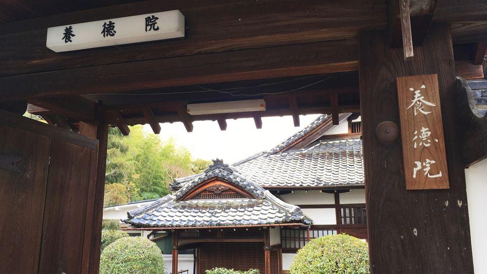 yotokuin-04_s