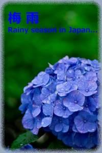 rainy season in Japan