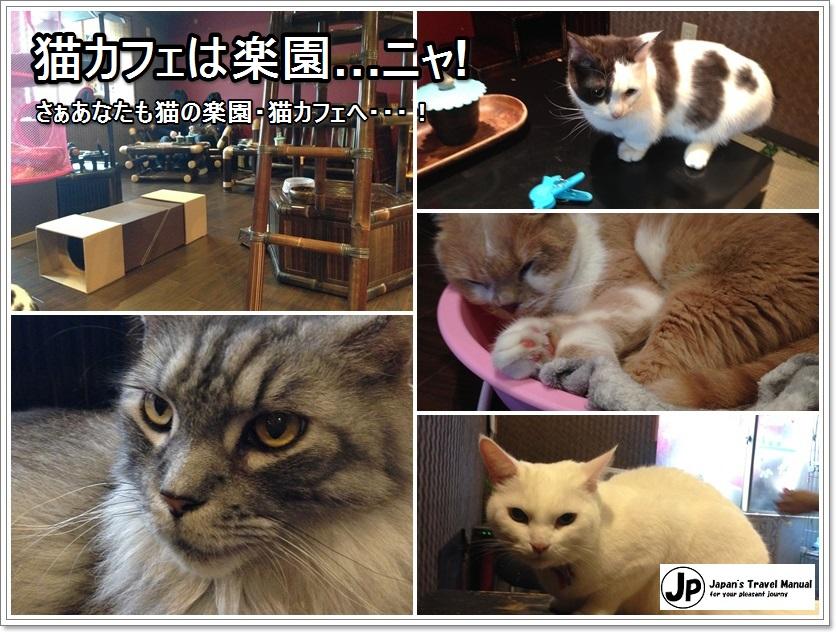 gurugurudou_03_jp