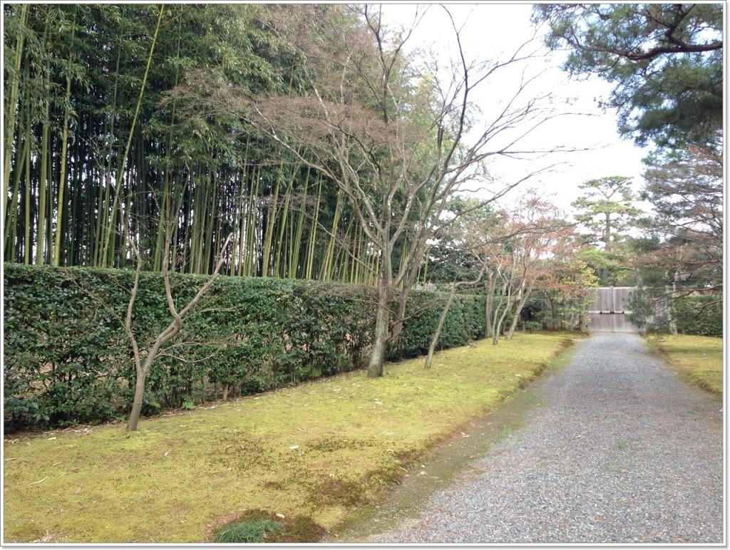 katsurarikyu_06