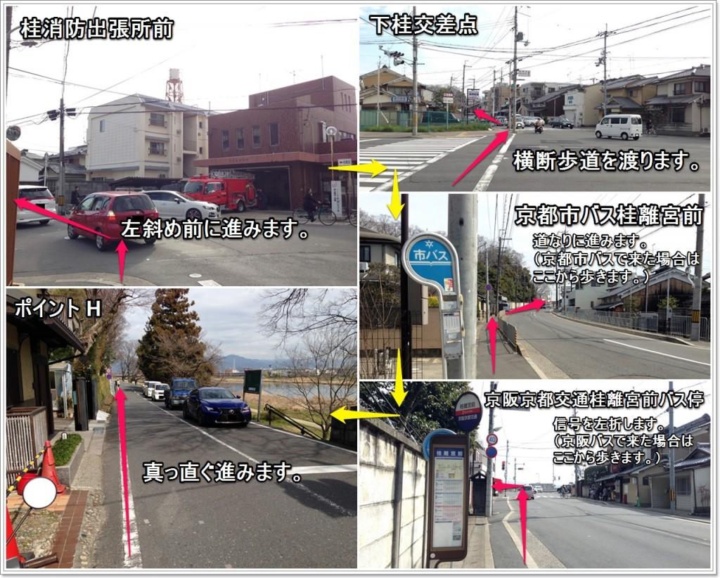 rikyu-05_jp