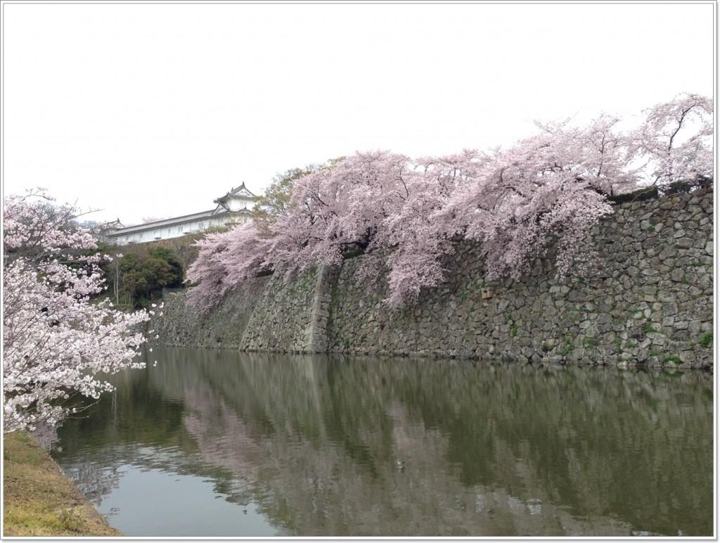 himeji-castle-point a