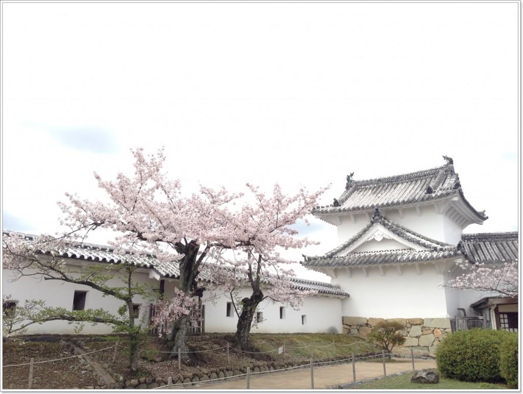 himeji-castle-pointJ