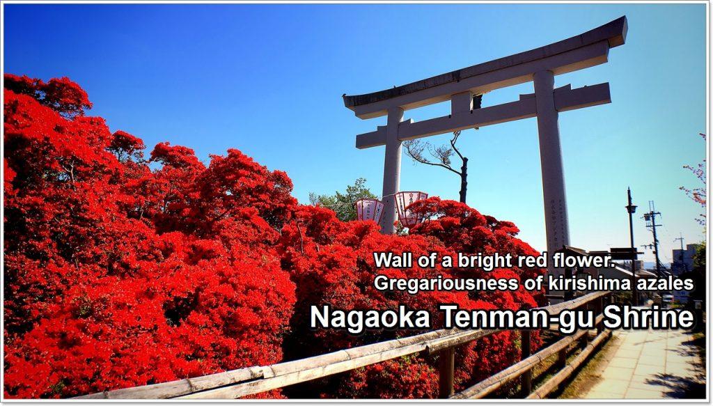 nagaoka-tenmangu-01_en