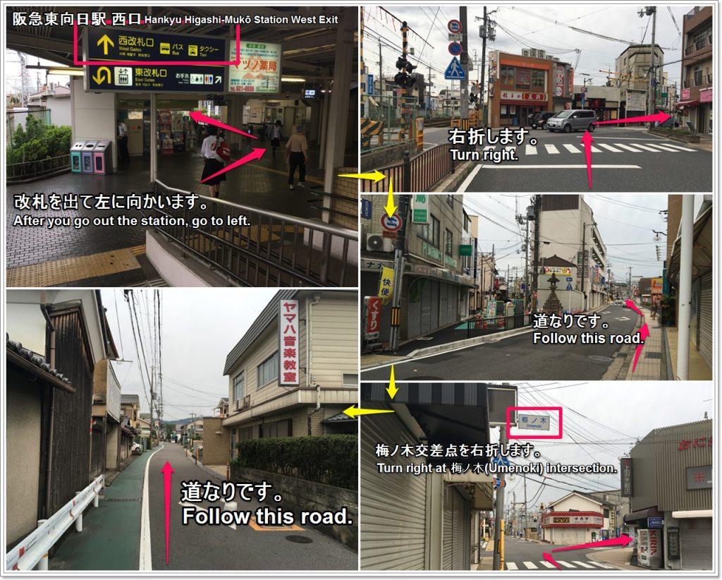 bamboo-road-02-txt