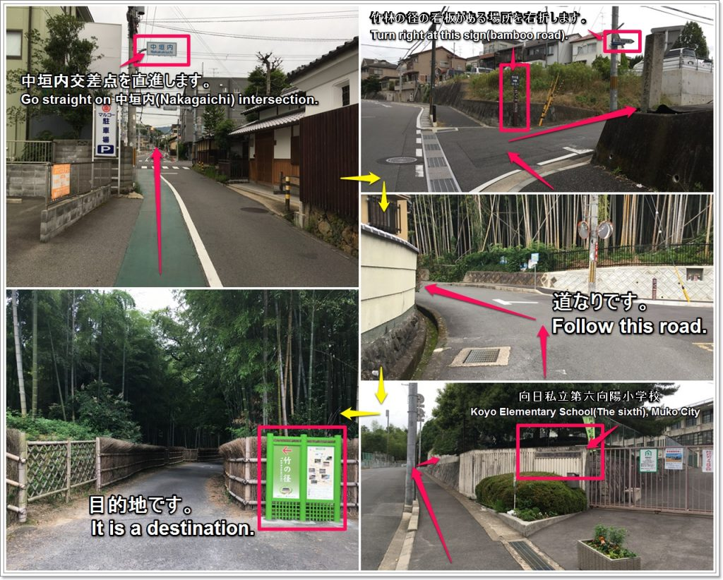 bamboo-road-03-txt