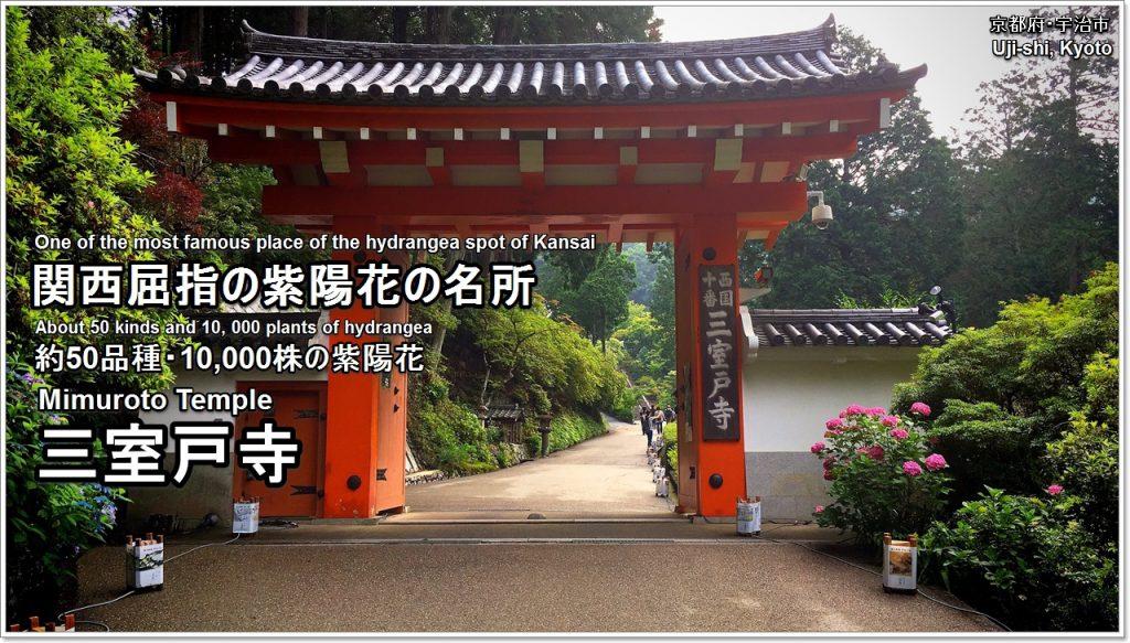 mimuroto-temple-01-txt