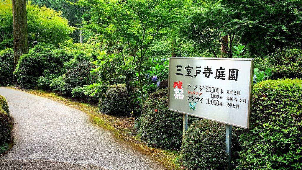 mimuroto-temple-05