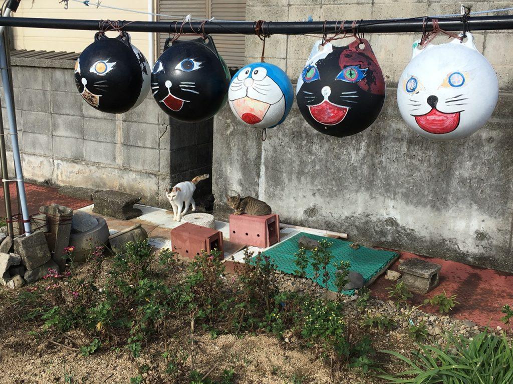 sanagishima-cat-25
