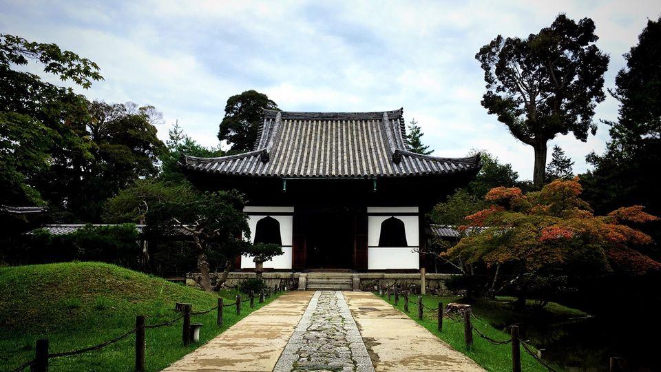 高台寺の臥龍廊