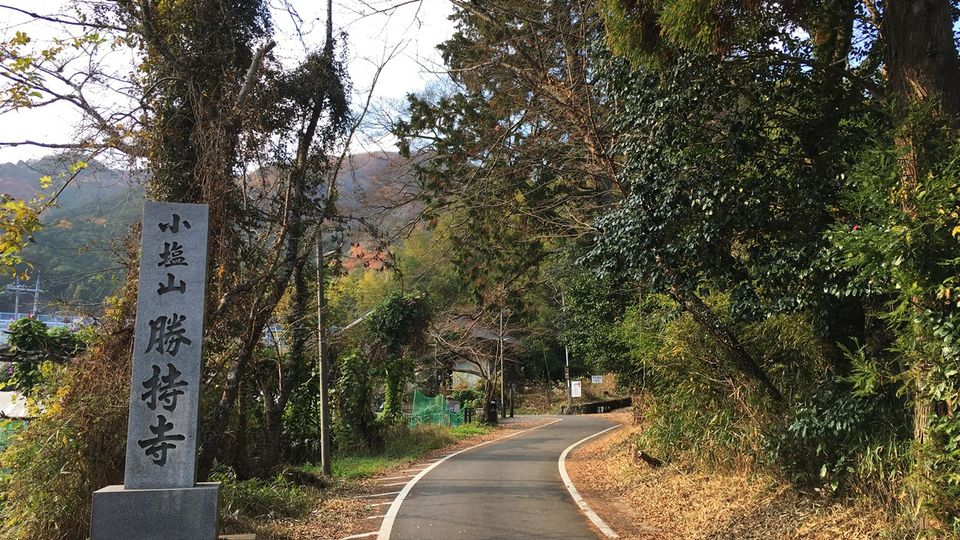 Precincts of Shoji-ji