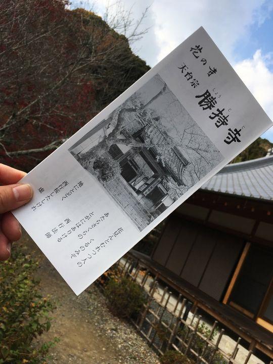 勝持寺のパンフレット