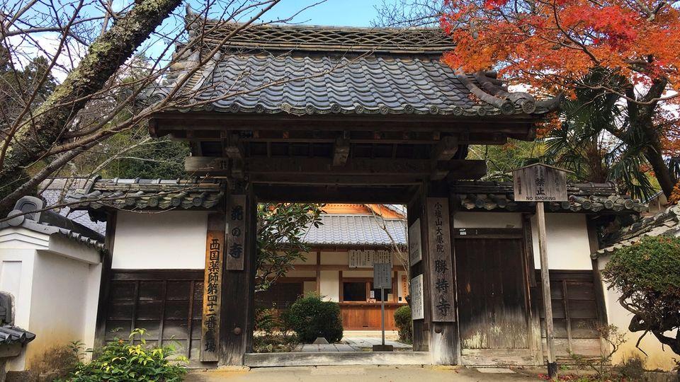 勝持寺の南門