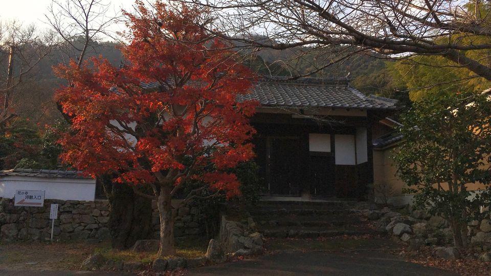 Higashi-mon gate of Shoji-ji