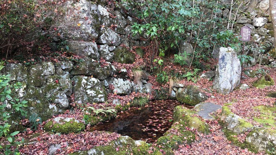 勝持寺の瀬和井の泉
