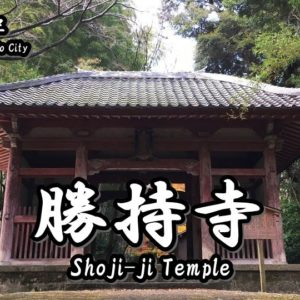 Directions and highlights of Gio-ji Temple.