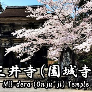 Directions and highlights of Mii-dera (Onjo-ji) Temple.